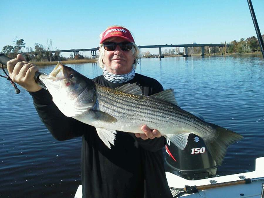 NC striped bass fishing charter