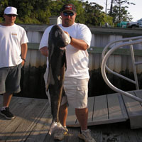 fishing charter wrightsville beach